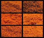 Paprika - Unterschied verschiedener Paprikapulver