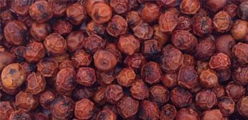 Roter Pfeffer aus Indien