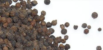 schwarzer Pfeffer aus Indonesien